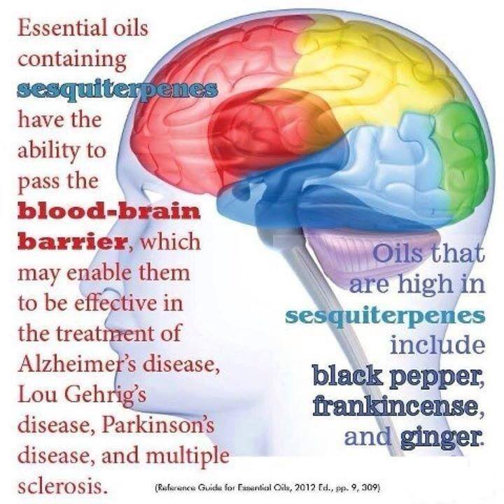 What about the Blood Brain Barrier?