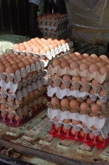 Eggs from the Coop