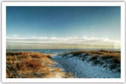 Beach Picture - Copy