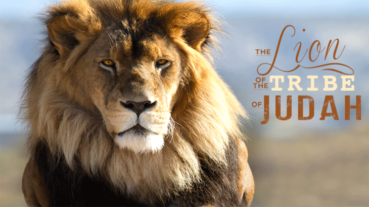 The-Lion-of-the-Tribe-of-Judahblog