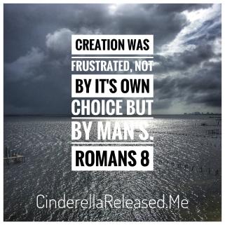 Sin Romans 8