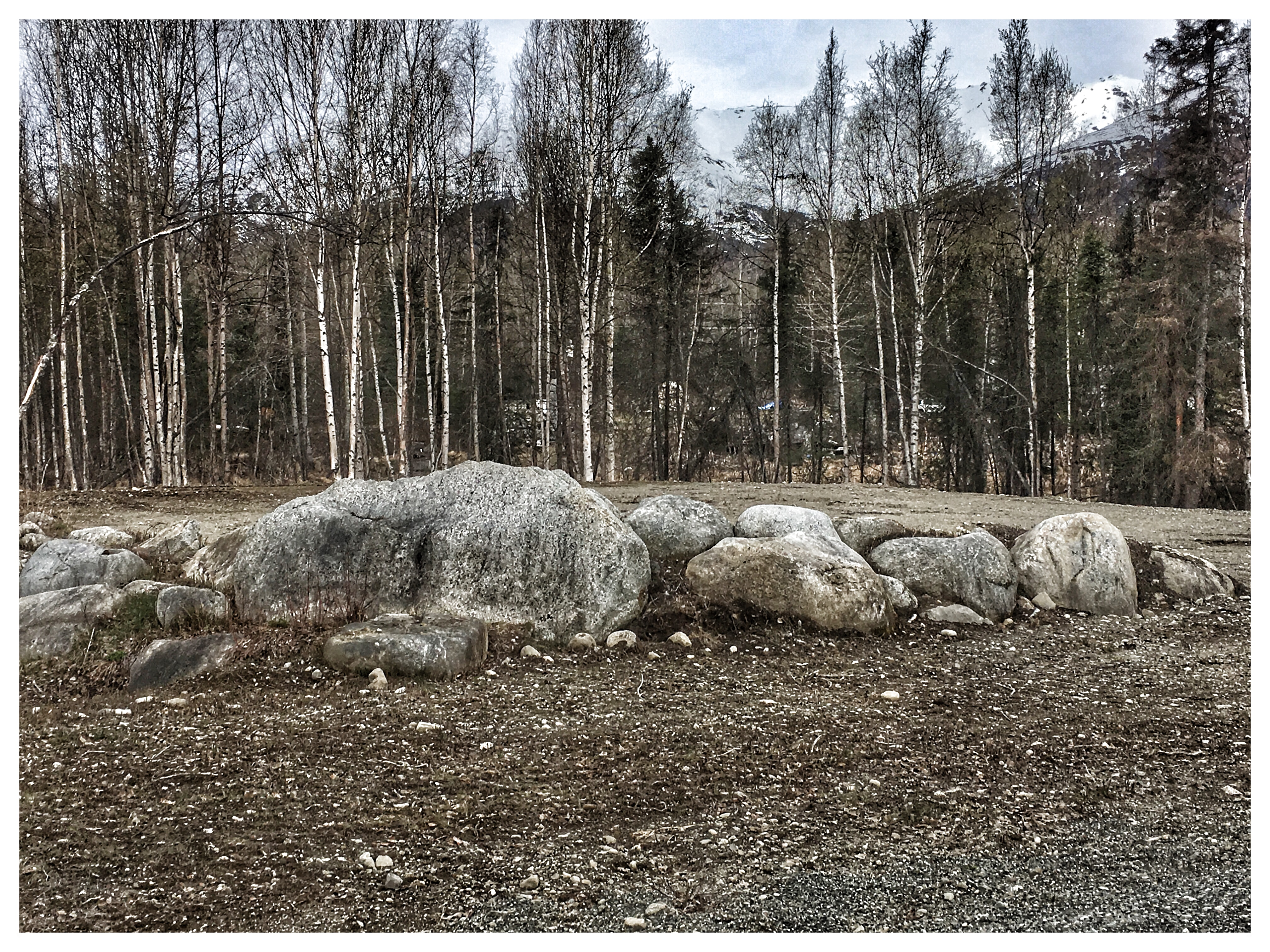 Field Rocks