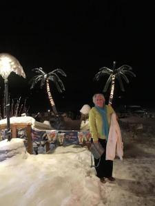 Islander Palm Snow Trees